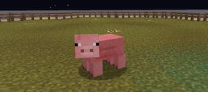 pigkiller